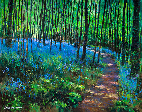 Bluebell Wood - 351 by Chris McMorrow