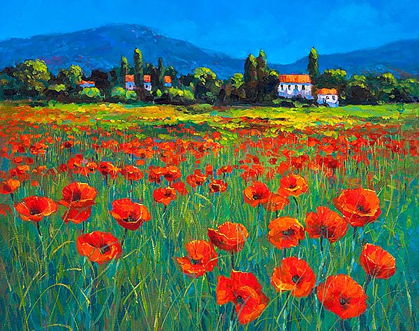 Chris McMorrow - Poppies in Provence - 468